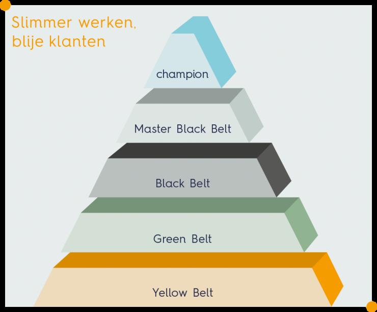 Overzicht van alle niveaus binnen Lean Six Sigma